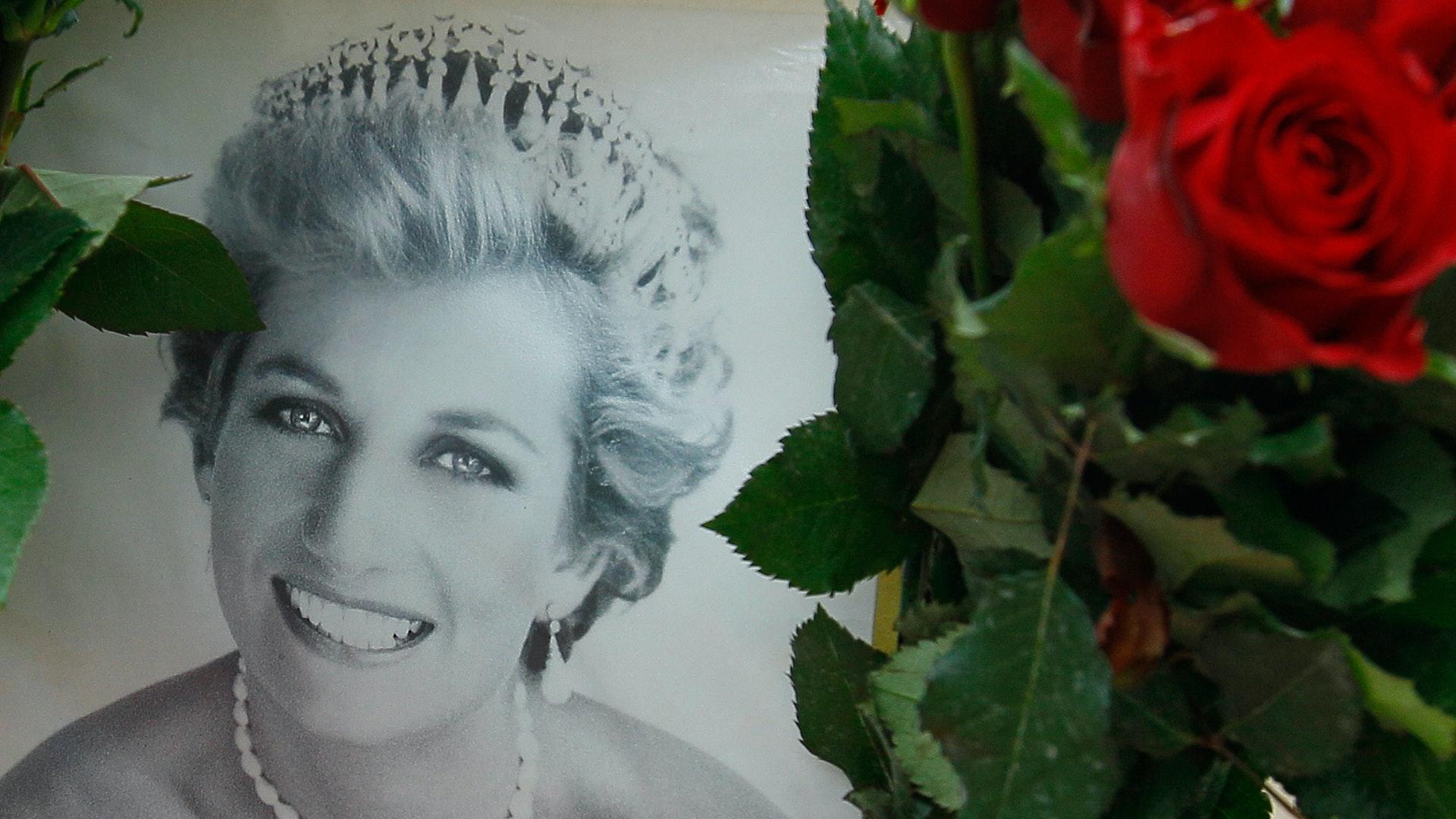 Dianas dod kan utredas igen